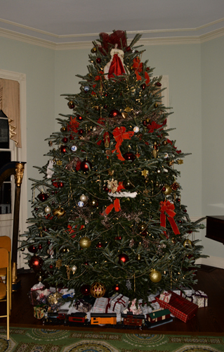 the beautiful 2015 christmas tree at laurel hill mansion was donated by bustard tree farm who